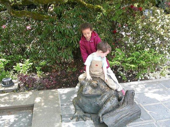 Bellevue Botanical Garden: The bronze frog
