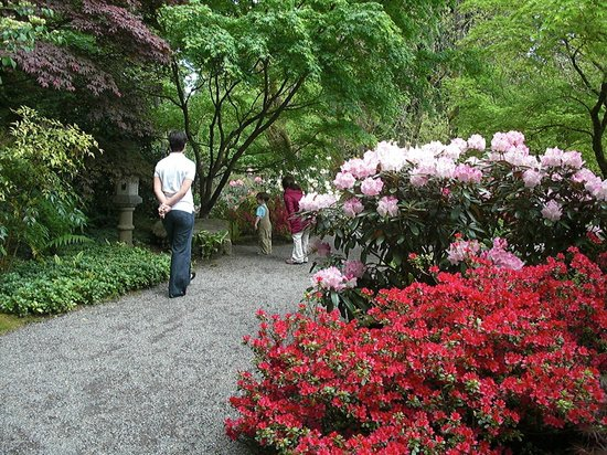 Bellevue Botanical Garden: Japanese Garden