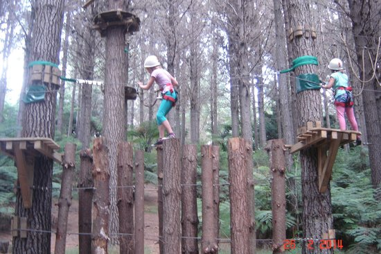 Adventure Forest: Finding your balance....