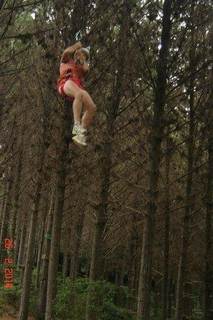Adventure Forest : The Best bit....
