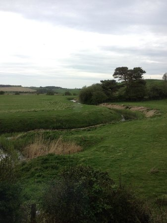 The Lodge at Winchelsea: View outside