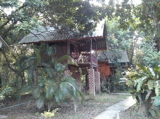 Khao Sok Jungle Huts: Jungle Hutst