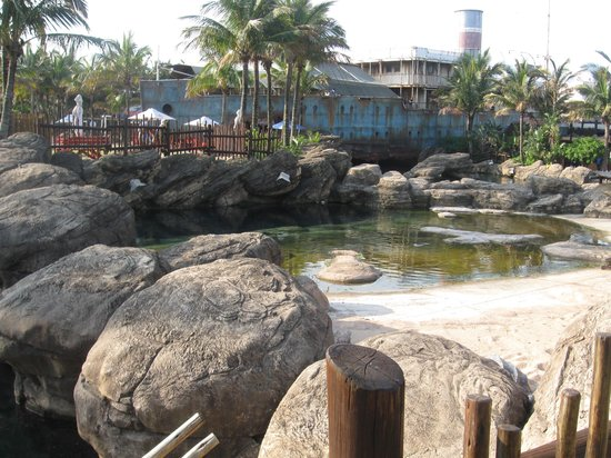 uShaka Marine World: A view across the turtle pond.