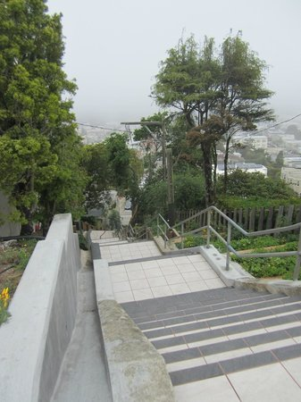 16 Avenue Tiled Steps : View from the top