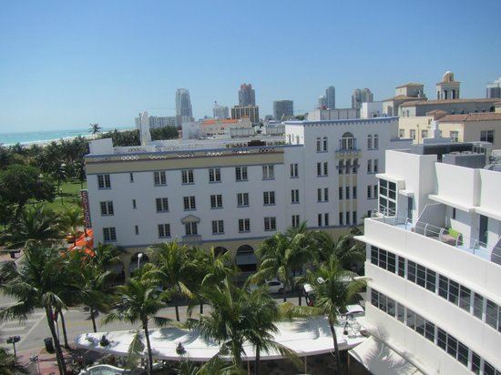 Clevelander South Beach Hotel : Roof top view