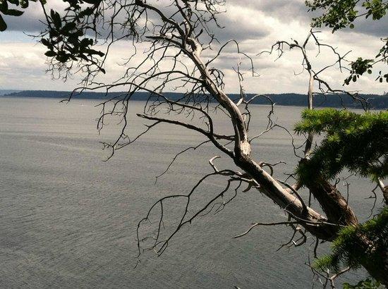 Camano Island State Park: Saratoga Passageway