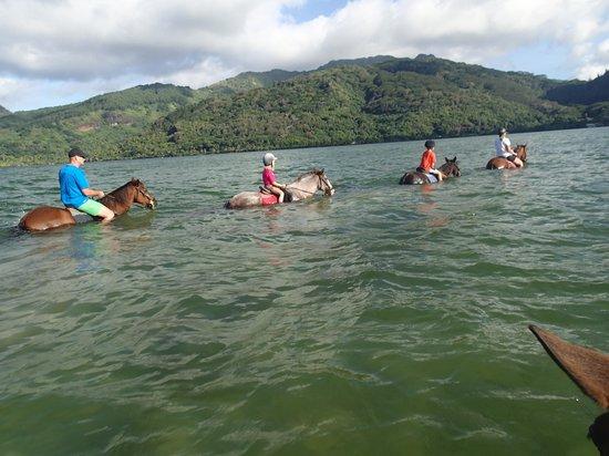 La Petite Ferme: Lac Fauna Nui