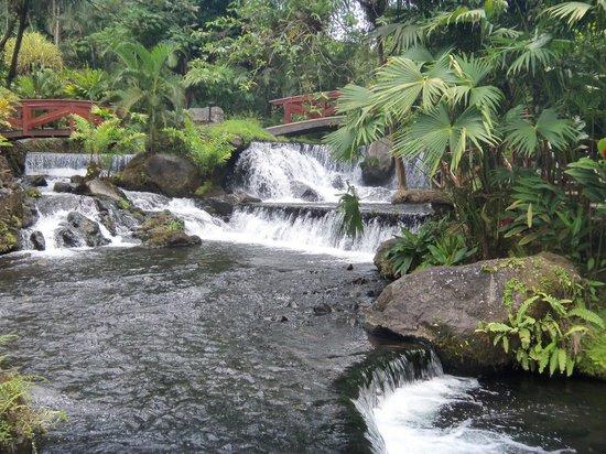 Tabacon Hot Springs: otro de los paisajes