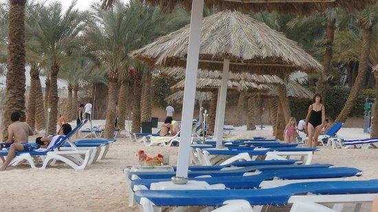 "Movenpick Resort & Residences Aqaba : ""Caribisch""hotelstrand"