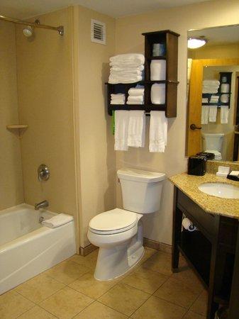 Hampton Inn Gettysburg: Bathroom 201