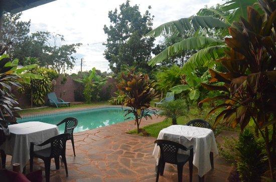 Los Tangueros: Patio & pool