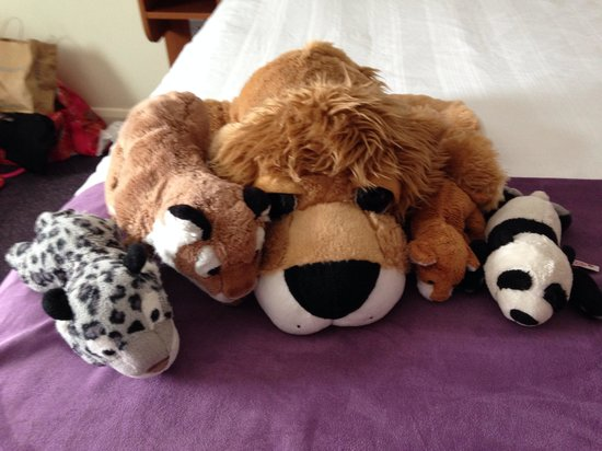 Premier Inn Hull City Centre Hotel: The toys had a fab time too