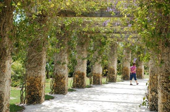 Naples Botanical Garden : Gardens