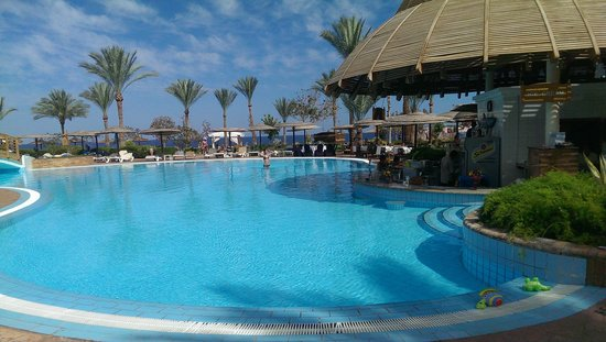 Royal Grand Sharm Hotel: pool bar - where we spent our whole holiday!