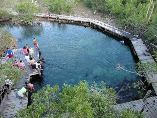 Holbox Island, Mexico: Cenote Yalahau.