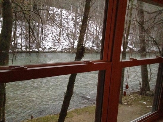 The Wright Cabins: Looking out the living room window