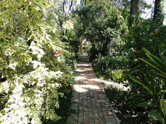 Gerald's Gift Guest House: Path from our room