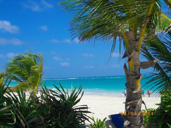 Caribe Club Princess Beach Resort & Spa: La plage