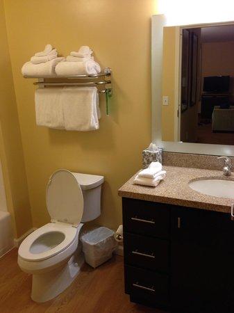 TownePlace Suites by Marriott Albuquerque North: Bathroom