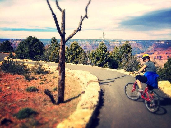 Bright Angel Bike Rentals and Tours: Loved!