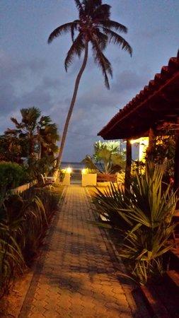 Aruba Sunset Beach Studios: Pathway at Dawn