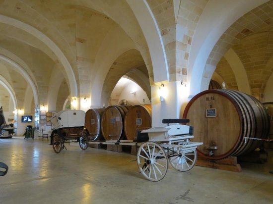 Museo della Civilta del Vino Primitivo