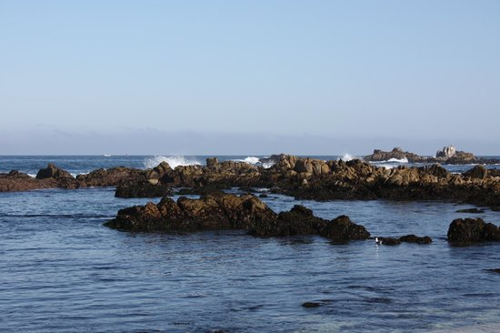 17-Mile Drive: Arrecifes