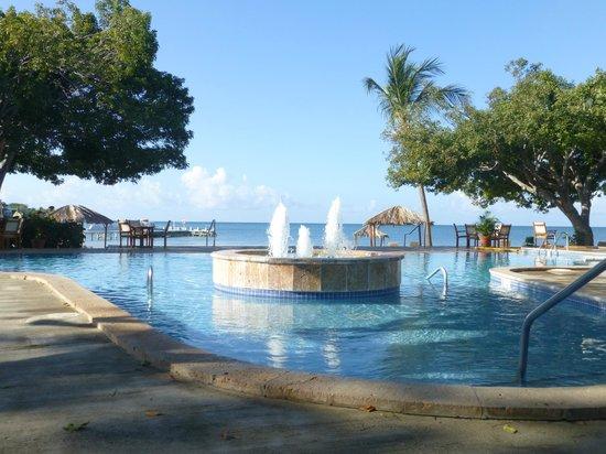 Copamarina Beach Resort & Spa: Infinity pool