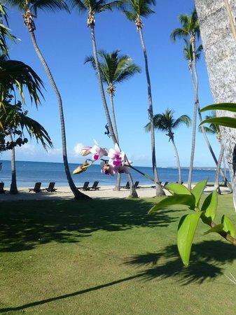 Copamarina Beach Resort & Spa: The grounds and beach