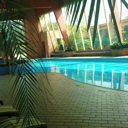 Piscina climatizada picture of hotel villa rossa sao for Piscina climatizada