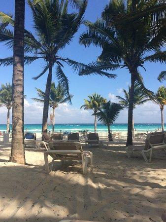 Hotel Riu Palace Riviera Maya: Shade under palm trees