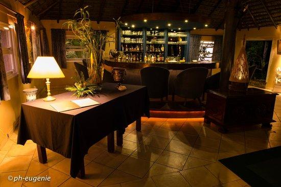Naina Park Hotel: Espace Bar