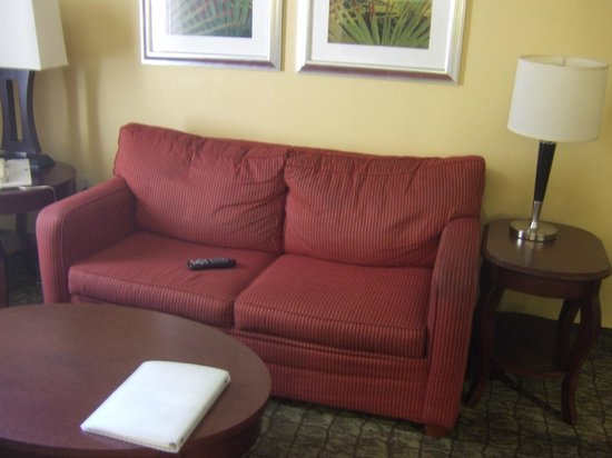 Hampton Inn & Suites Ft. Lauderdale Airport/South Cruise Port : Small, saggy sofa