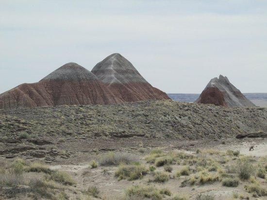 Painted Desert : Tepees