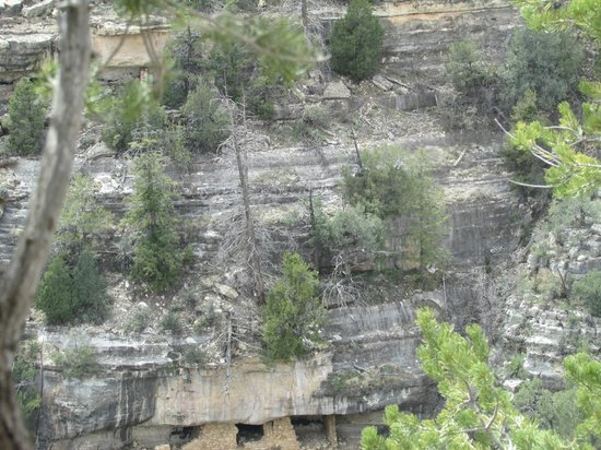 Walnut Canyon National Monument: The Canyon