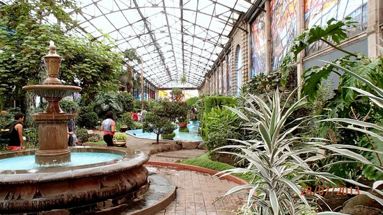 Foto de cosmovitral jard n bot nico toluca vitrales en for Jardin botanico medicinal