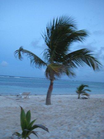 Balamku Inn on the Beach : Los alrededores en Mahahual