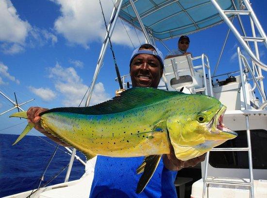 Cape Santa Maria Beach Resort & Villas: Mahi Mahi caught deep sea fishing