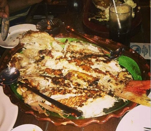 Langosteria Maya Restaurant : Whole grilled fish photo