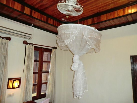 Thida Guesthouse: Mosquito Netting