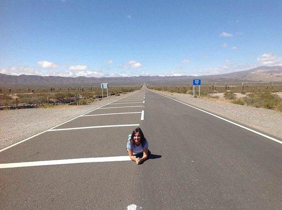 Andes Challenge: Parque Nac Los Cardones, Ruta 33 Camino a Cachi