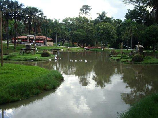 Parque Zoologico : Vista central