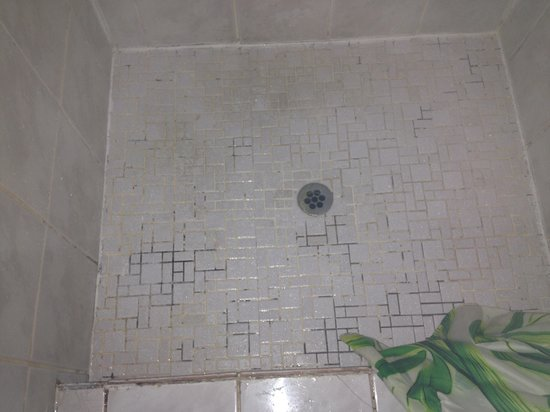 Cedar Creek Lodges: Shower with mould and scum