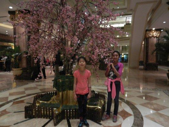 Majesty Plaza Shanghai: Lobby.
