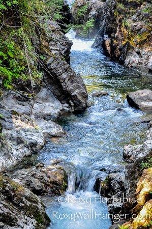 Little Qualicum Falls Provincial Park: Little Qualicum Falls Summer