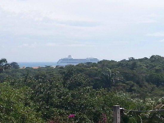 Bossa Nova : Crucero