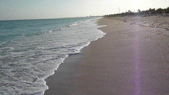Hotel Club Puntarena: early morning beach