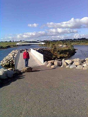New Plymouth Coastal Walkway : Seenic area adjacent to Lake Rotomanu.
