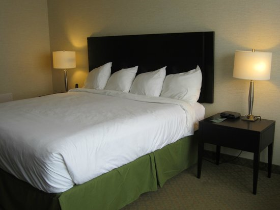 Greenwood Inn & Suites: King Executive Room