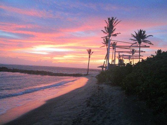 Nisbet Plantation Beach Club : Sunrise at the beach